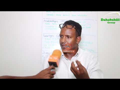 Maxaa Keenay In Eriteria Wafdi U Soo Dirto Somaliland