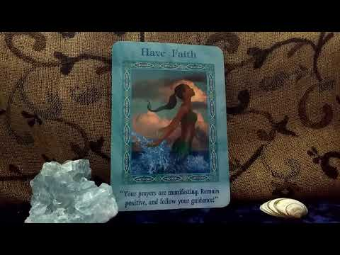 Daily Oracle Card Reading 20th January 2018 Fairy Willow using Magical Mermaids and Dolphins  taro
