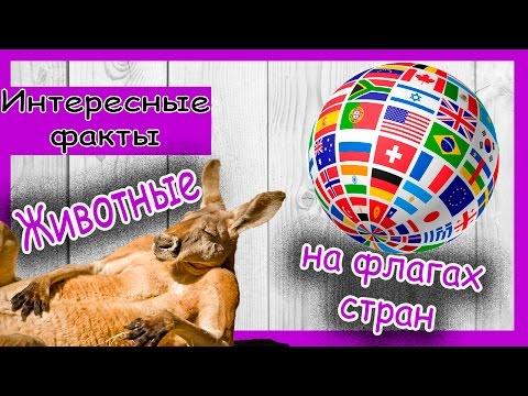 Животные на флагах стран (интересные факты).