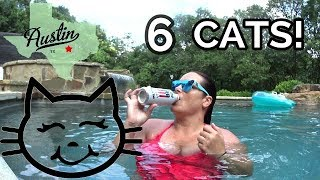 House sitting in ATX // Cats + Salt Water Pool! YES PLS