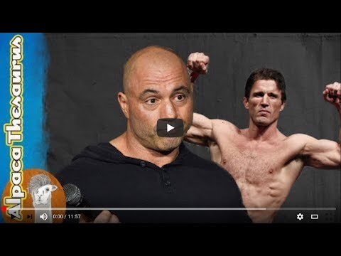 Joe Rogan Savaged by Angry Chael Sonnen over Colby Covington @ UFC 225