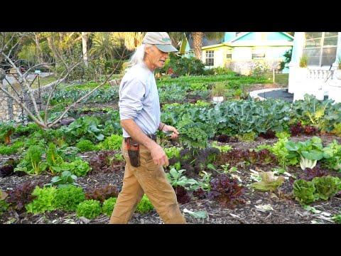 $1000-a-week:-front-yard-market-farming-+-bicycle-delivery-(w/-jim-kovaleski)