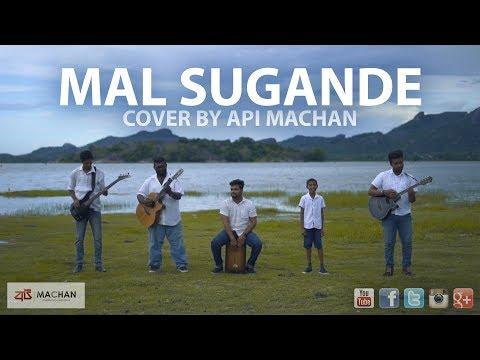 Dam Sugandhe - Cover by Api Machan. #apimachan