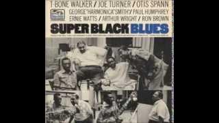 T-Bone Walker, Big Joe Turner, Otis Spann & George