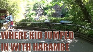 Gorilla World - Where Kid Jumped in at Cincinnati Zoo