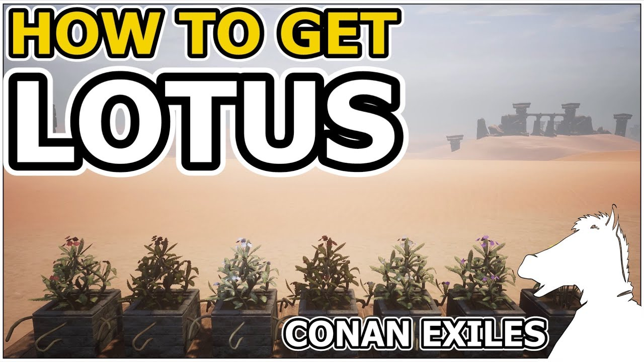 How To Get Lotus Conan Exiles Youtube
