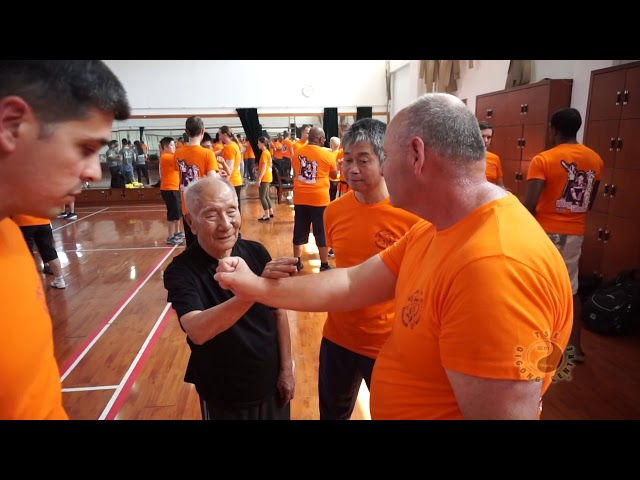 Chi Sau with Grandmaster Ip Chun pt3