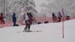第92回全日本スキー選手権大会  男子SL1本目