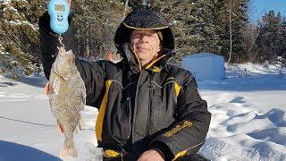 Зимняя рыбалка 2019. Убойная рыбалка в день мужиков.