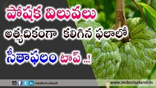 Benefits Of Eating Custard Apple||About Castard Apple In Telugu||
