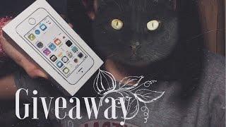 Большой конкурс на iPhone / Huge giveaway