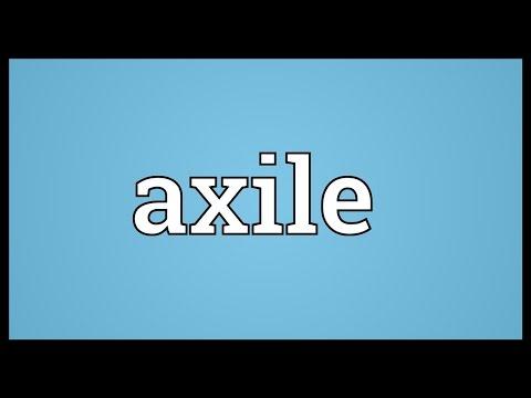 Header of axile