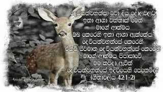 Diya Soyana Muwa Powwaku Se - Sinhala Christian Worship song