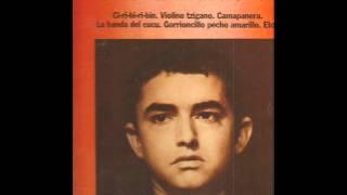 Joselito  -  violino tzigano