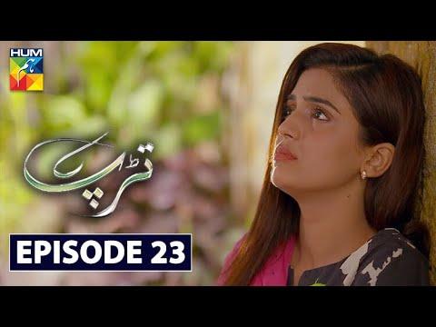 Download Tarap Episode 23 HUM TV Drama 9 August 2020