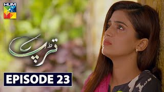 Tarap Episode 23 HUM TV Drama 9 August 2020