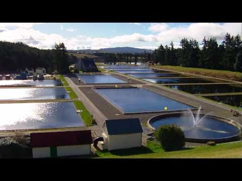 Vartry Water Treatment Plant