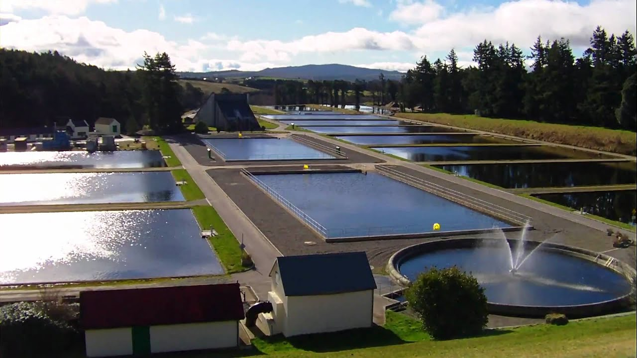 Finding Water Treatment Systems That Really Work maxresdefault