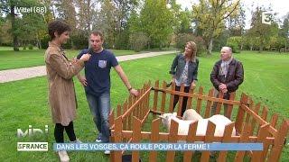ANIMAUX & NATURE : Dans les Vosges, ça roule pour la ferme