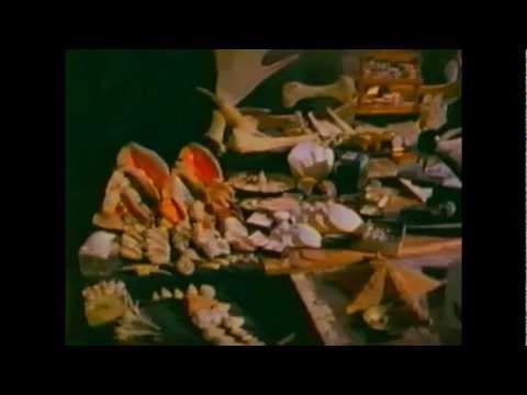 Aliens (Christmas 1988) by Rheostatics