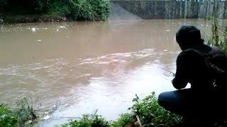 SAMBARAN GALAK  IKAN BAUNG  Setelah Hujan Deras MANTAPP  TARIKANNYA mp3