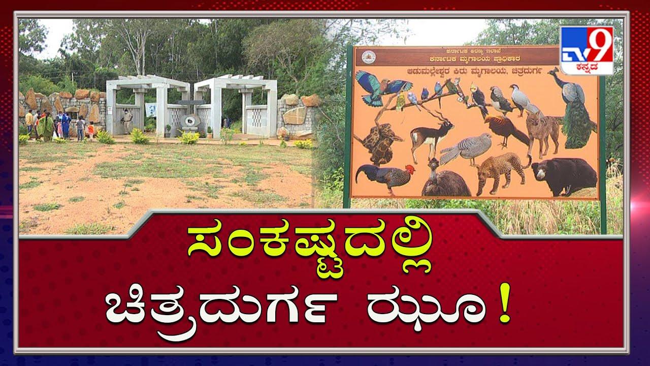 ಸಂಕಷ್ಟದಲ್ಲಿ ಚಿತ್ರದುರ್ಗ ಝೂ! Government Fails To Develop Adumalleshwara Zoo In Chitradurga