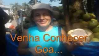 Viagem a Goa - 14 a 28 de Dezembro de 2013