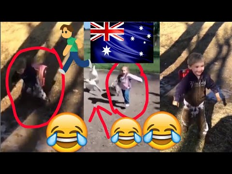 you'll-die-of-laughter-you-can-not-stop-laughing-funny-kids-😂😂😂😂-2018-!-so-funny