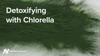 Detoxikace chlorelou
