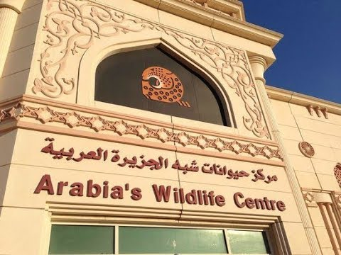 Arabian Wildlife Center | Sharjah|