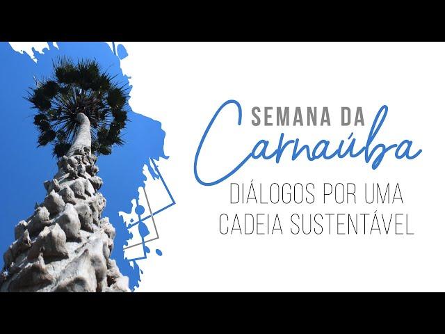 Semana da Carnaúba: Diálogos para uma Cadeia Sustentável