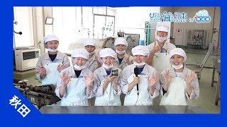 男鹿海洋高校 食品科学科の皆さんが水産加工として、 「鰤(ブリ)のカ...