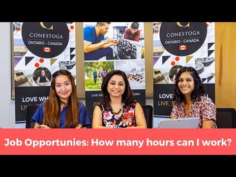 Job Opportunities As An International Student