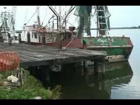 Fishing boats at the docks apalachicola fl youtube for Apalachicola fishing report