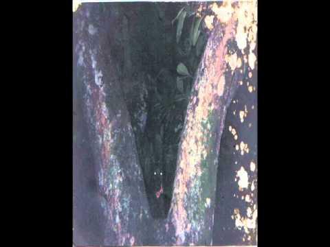 Incubatedevilspawn - Dead Woods.wmv