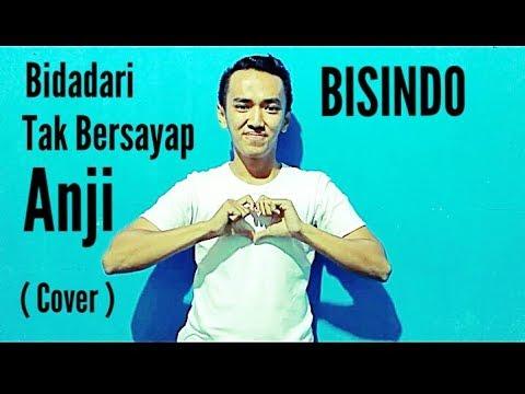 BISINDO - Bidadari Tak Bersayap - Anji (Cover ) Rangga Bastian