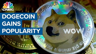 Dogecoin's popularity soars — Robinhood and Coinbase benefit