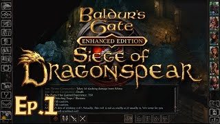baldur's Gate: Enhanced Edition - Siege of Dragonspear FULL OST HIGH QUALITY