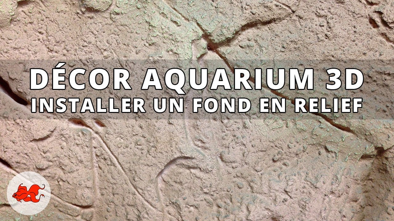 Installer Un Decor 3d Pour Aquarium Youtube