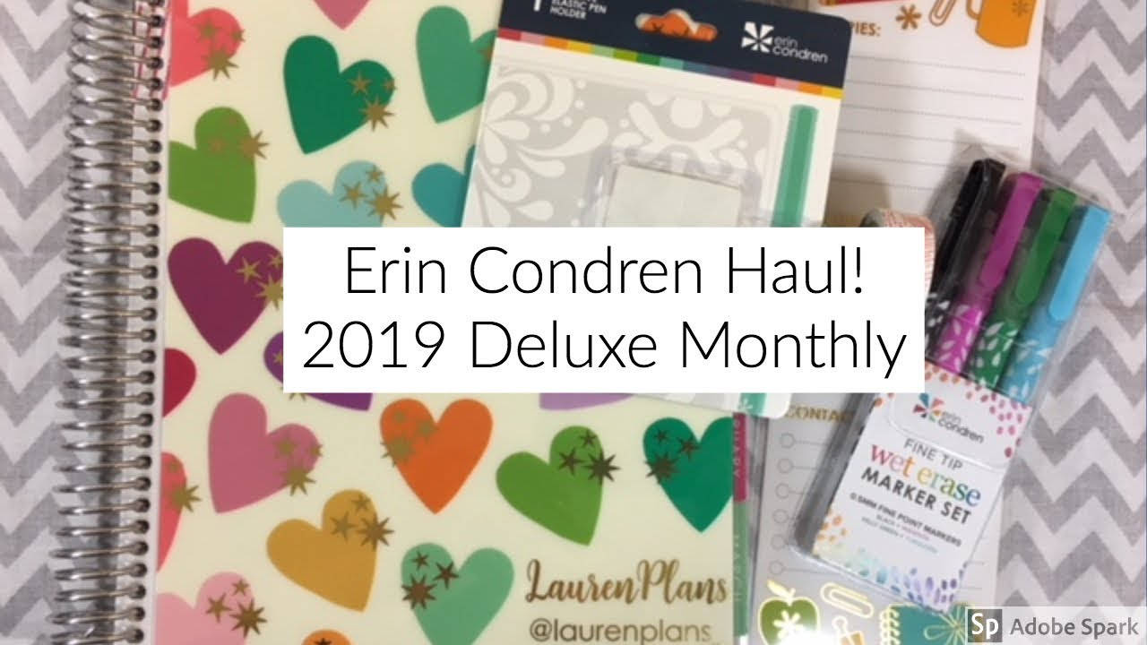 Erin Condren Haul! NEW 2019 Deluxe Monthly Planner // EC Accessories