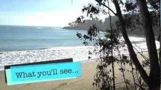 San Simeon William R. Hearst Memorial State Beach