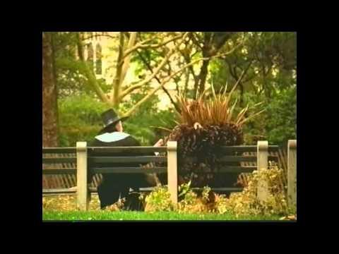 Robert DeNiro & Billy Crystal Thanksgiving Commercial (2001)