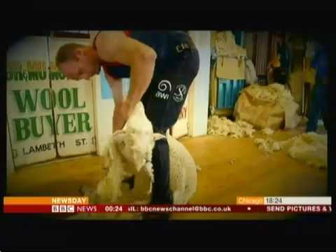 Daniel McIntyre - Top sheep shearer (Australia) - BBC News - 7th March 2016