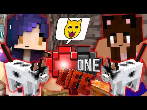 Yammy's Kitty Shop | Ep. 15 | One Life Minecraft SMP