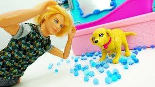Кен купил щенка для Барби. Видео для девочек куклы