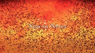 ナノ - Now or Never