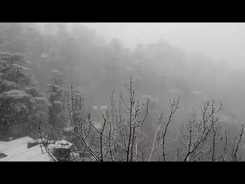 Snow season in Shimla - February is Best Time to Visit Shimla