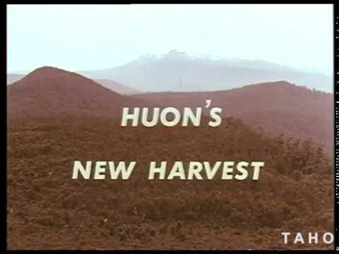 Huon's New Harvest