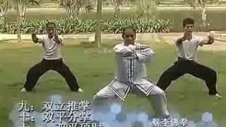 蔡李佛规定拳术竞赛套路 (全套完整) Choy Li Fut