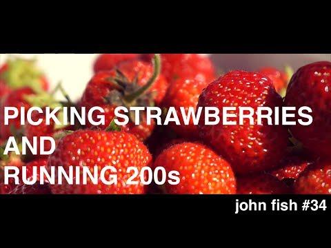 picking-strawberries-and-running-200s